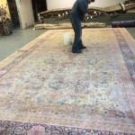 Commercial Carpet Cleaning Lynnwood