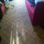 Lynnwood-Carpet-Clean-before