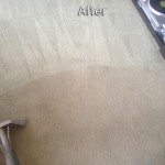 Lynnwood-Carpet-Cleaning-Company