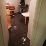 Lynnwood-office-room-flood-damage-repair